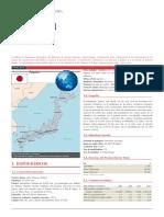 JAPON_FICHA PAIS.docx
