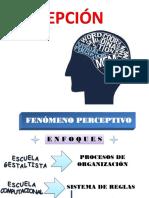 Repaso perepción-habilidades mentales-solución de problemas.pdf