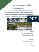 aguas residuales proyecto (2) (1) (1)