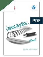 caderno de prática