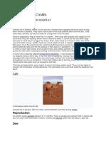 Adaptation and Habitat