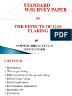 THE_EFFECTS_OF_GAS_FLARING_PAPER-_PRESEN.pptx