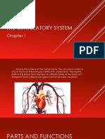 CIRCULATORY SYSTEM-2.pptx