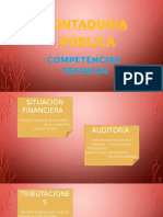 Contador Público-perfil Profesional