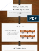 articles nouns and adjectives agreement