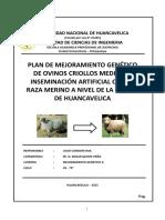 Plan de Mejora Genetico de Ovinos Criollos Final