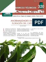 Anormalidades en floración de cafeto