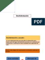 deshidratacion2019sf (1).pdf