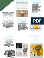 Imprimir Brochu