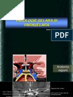 60.Patologie Selara Si Paraselara