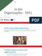 Estrutura Das Organizações - 5651