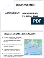 DISASTER MANAGEMENT TSUNAMI .pptx