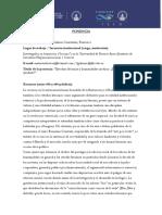 Ponencia_ Gelman Constantin.pdf