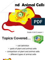 Grade 4 Unit 3 Lesson 1 Plant & Animal Cells