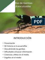 08 Ramón Chávez - Cultivo de gambas dulceacuícolas un arte prohibido (1)