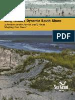 LIDynamicSouthShore.pdf