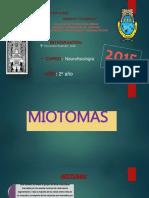 miotomas