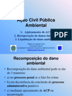 Acao Civil Publica Ambiental