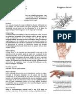 buigpees-letsel.pdf