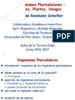 6.- Organismos Pluricelulares - Animales y Plantas (1)