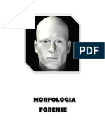 MORFOLOGIA FORENSE METODOS DE INVESTIGACION.docx