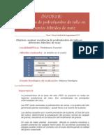 317_informe20082