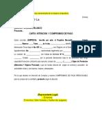 Cajas de Productos Modelo Carta Intecion y Pago