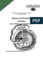 Practica de Placenta