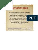 Constitucion Sistema Procesal