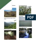 Areas Protegidas de Centroamerica