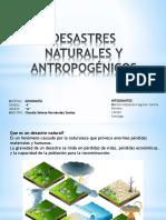 DESASTRE NATURAL Y ANTROPOGENICO
