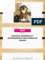 SparY Rueda de Correr ecol/ógica silenciosa para Mascotas Duradera pl/ástico Resistente al Deslizamiento para h/ámster