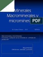 Minerales y Suplementacion 2017