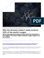 Not 20% of World's Oxygen From Amazon