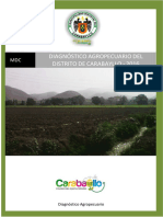 Diagnostico Agropecuario I.docx