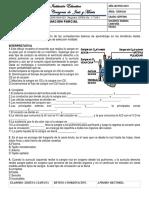 SEGUNDA EVA PARCIAL 2P - 7.docx
