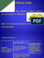 Olericultura Classificao Tipos de Hortas Ferramentas