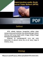 PPT NTD.pptx