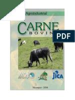 Cadena de La Carne Nicaragua y Otros Paises