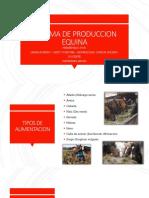 Sistema de Produccion Equina.