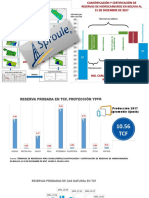 reservashidrocarburosbolivia-180521145006.pdf