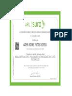Certificado Modulo Introductorio_ Prevencion e Intervencion de Factores Psicosociales