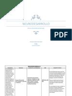 Neuro Desarrollo