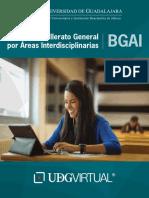 bachillerato interdiciplinarios.pdf