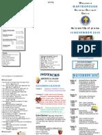Newsletter Nov 14 2010