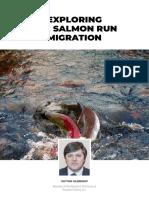Exploring the Salmon Run Migration