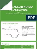 Endo Cannabinoids