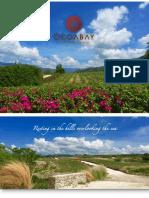 Ocoa Bay Information