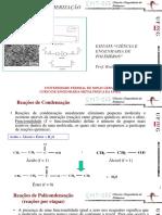 EMT055_02_polimerização