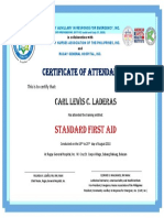 Standar First Aid